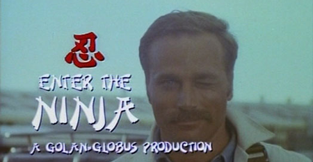 Enter-the-ninja
