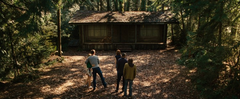 cabinwoods1356
