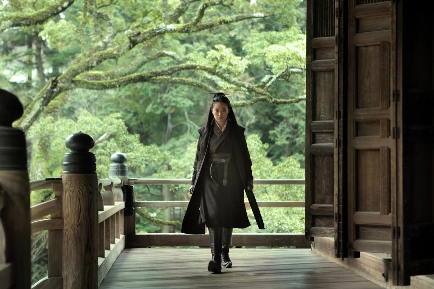 N jak Nie Yin Niang (The Assassin). Czyli nagrodzony za reżyserię nowy film Hsiao-hsien Hou. Dziwna sprawa, większość zachodnich recenzentów się nad nim rozpływała, premierowy pokaz został ponoć nagrodzony długimi brawami. Koleżanka jednak z niego wyszła po godzinie i podobno uczyniła to przed nią znaczna część sali. Ostrzeżony, z pewnymi obawami udałem się więc na następny pokaz, z którego po 30 minutach wyszedł Filip Jalowski oraz Maciek Niedźwiedzki. Wielu polskich recenzentów obchodziło później szerokim łukiem temat tego filmu w swoich podsumowaniach festiwalu, niewiele się nad nim rozwodząc. Wiem, że nie podobał się Michałowi Oleszczykowi. Michał Walkiewicz zdaje się, że również nieco narzekał. Jedynie chyba Tadeusz Sobolewski wyraził zdecydowany zachwyt i zaliczył nawet dwa seanse. Osobiście bezboleśnie wysiedziałem do końca, nawet dostroiłem się do powolnego rytmu filmu i dałem się temu ponieść do końca, ale nie mogę powiedzieć, żeby mi się podobało. Nagroda dziwi, bo technicznie pozostawiał wiele do życzenia, szczególnie styl prowadzenia kamery. Abstrahując jednak od tego, to film o niekończących się dysputach Chińczyków na mało interesujące tematy, pozbawionych napięcia intrygach, nudnym życiu dworskim i chmurkach płynących po niebie. Chmurki były najfajniejsze.