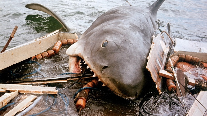 jaws-6