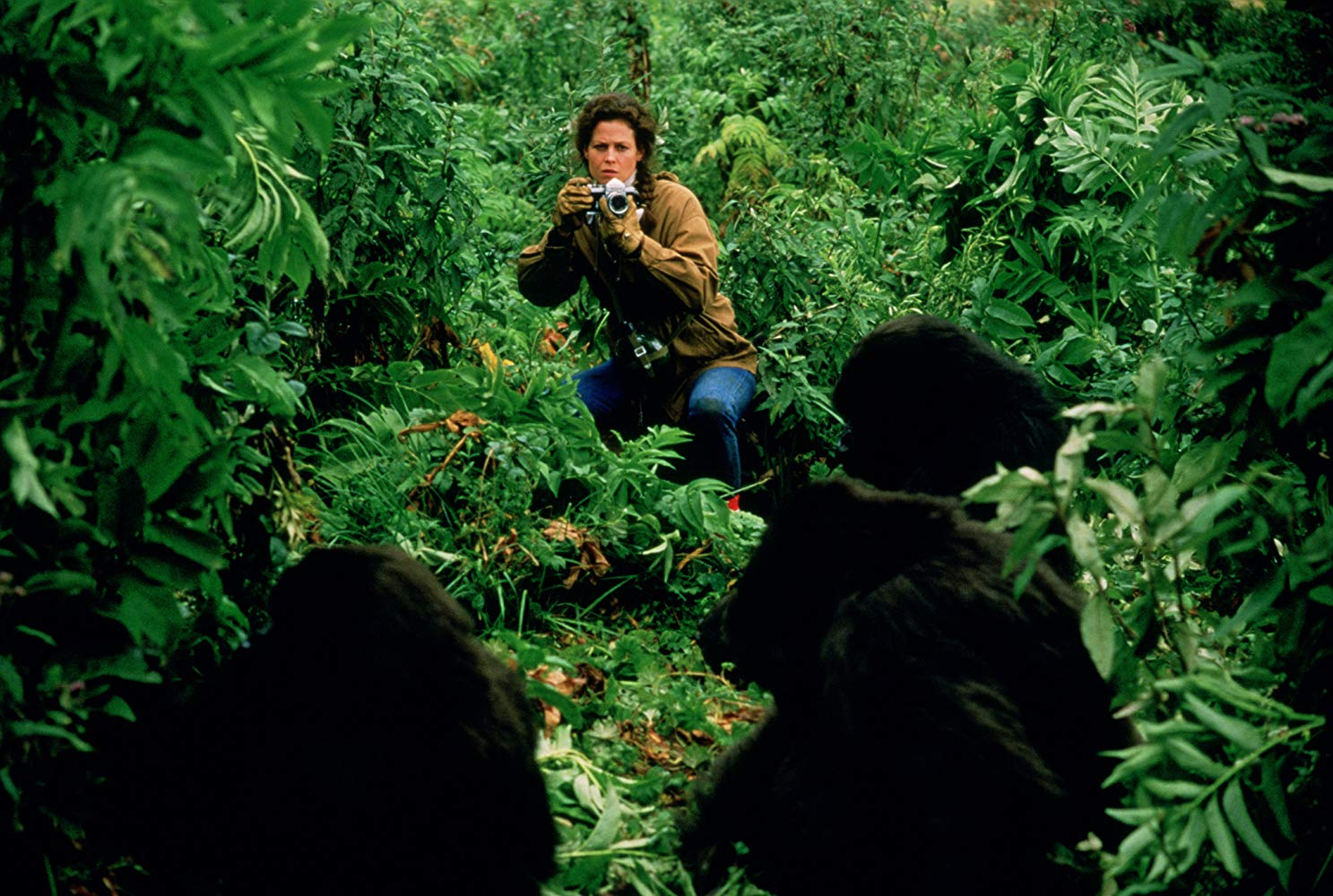 gorillas-in-the-mist-sigourney-weaver-1